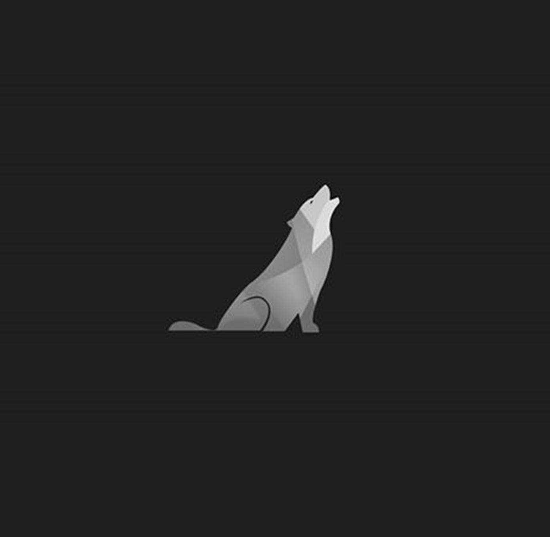 Wolf Global
