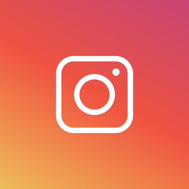 Instagram Services