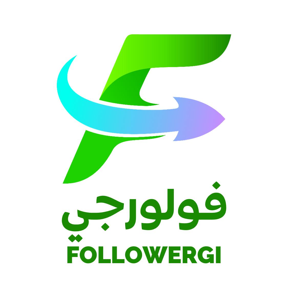 followergi.com
