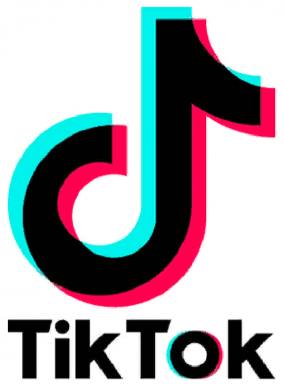 Make Money in Tiktok!