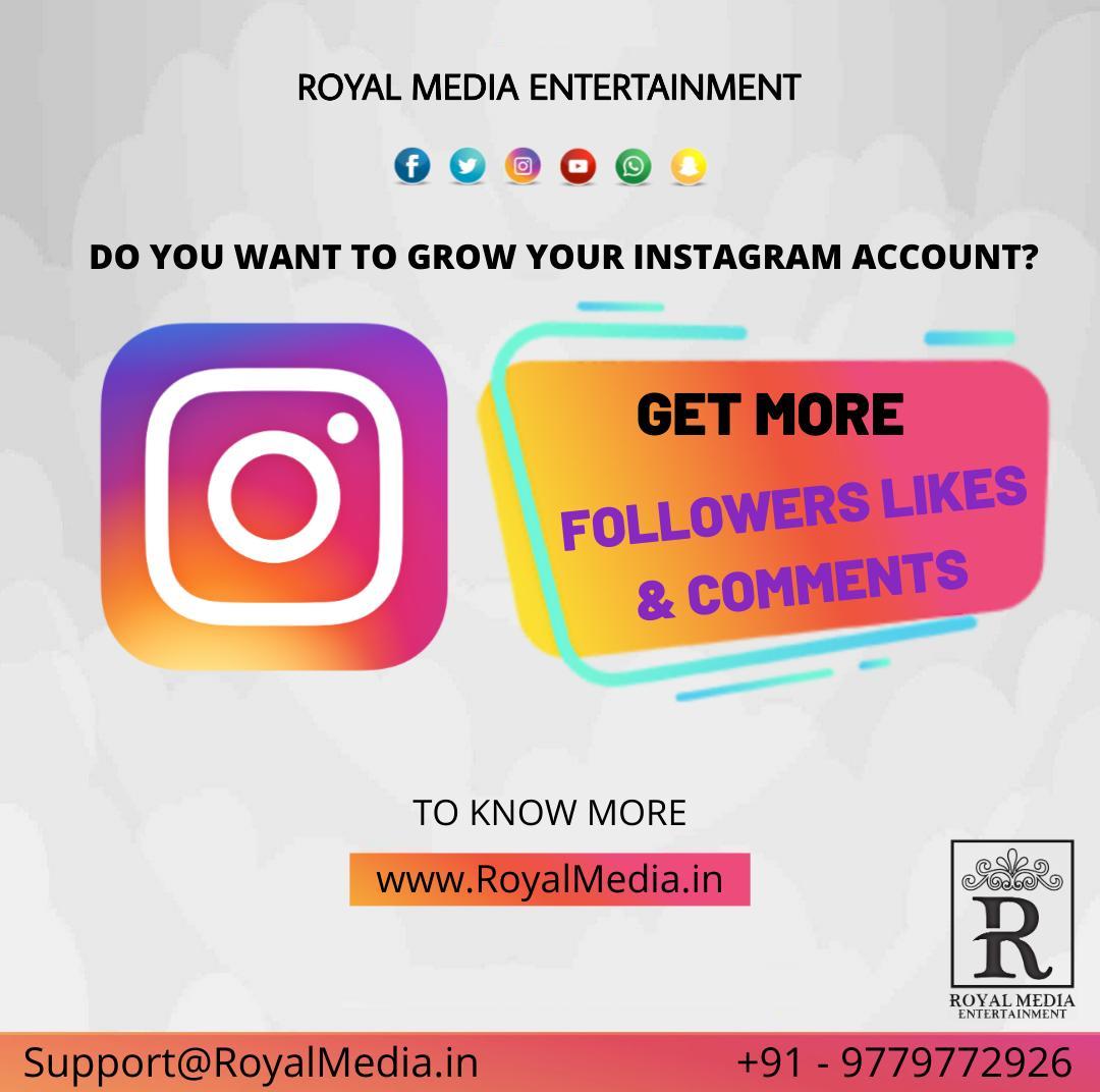 Organic Instagram Growth Service