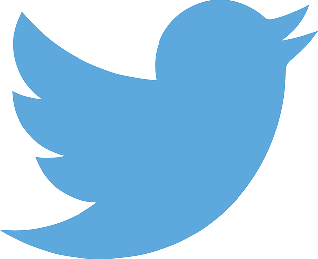 What Is The Best Way To Get Fast Twitter Followers?