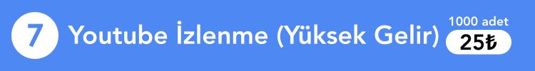 Youtube izlenme yüksek gelir