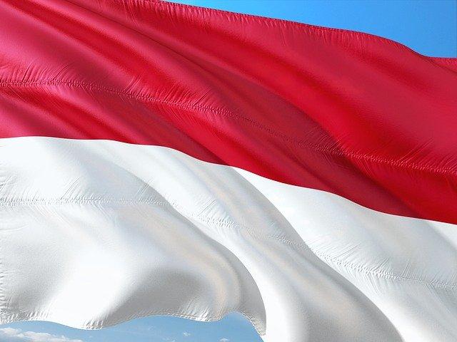 SMM Panel indonesia